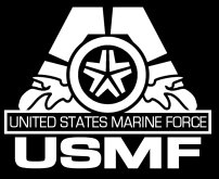 "USMF Final Fantasy - United States Marine Force 3""x4"" Patch"